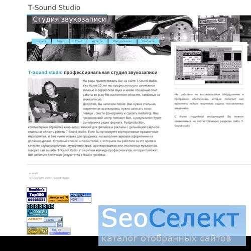 T-Sound Studio - http://www.tonestudio.ru/