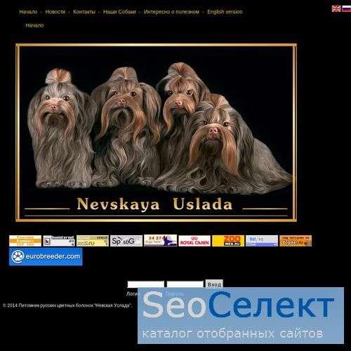 Rusbolonka.com - купить щенка цветной болонки - http://rusbolonka.com/