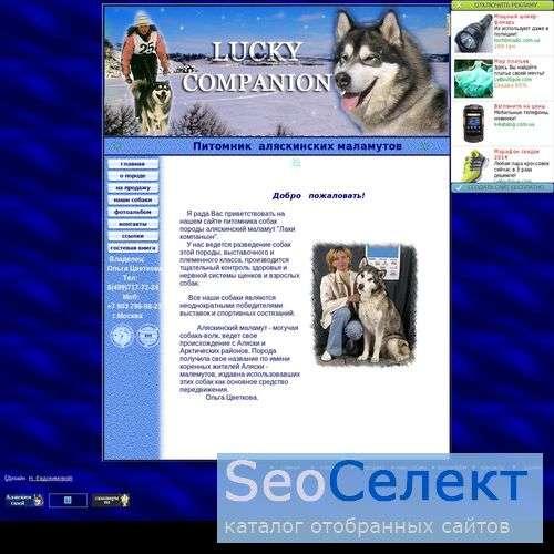 Аляскинский маламут - http://my-malamoot.narod.ru/