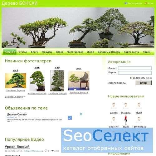 Бонсай - дерево в горшке - http://www.bonsai.net.ru/